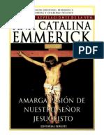 Tomo 11 - Amarga pasión de Nuestro Señor Jesucristo - Beata Ana Catalina Emmerick - Visiones y Revelaciones