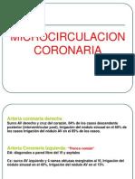 microcirculacion coronaria