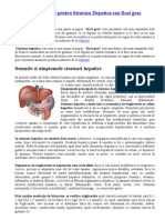 Tratament naturist pentru Steatoza Hepatica sau ficat gras