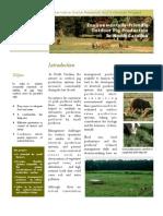 Environmentally Friendly Hog Production