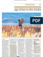 "Quinoa brings riches to the Andes. Por Dan Collyns en ""The Guardian"""