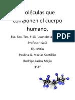 Moléculas que componen el cuerpo humano