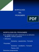 MORFOLOGÍA DEL PRONOMBRE
