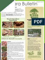 katalog tanaman hias
