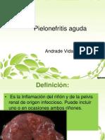 Pielonefritis aguda 1