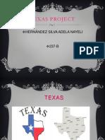 Texas proyect
