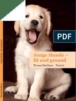 Junge Hunde_fit und gesund
