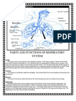 PARTS AND FUNCTIONS OF RESPIRATORY SYSTEM.