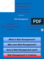 Report in Risk Management