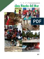 Reporte Anual Mariamulata 2012
