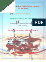 fluidos newtoniano y no newtonianos