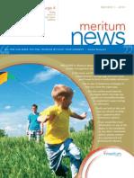 Meritum Newsletter Edition 1 2013