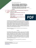 Sistemas funcionales, organizaciones y  membrecía