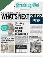 I.M. magazine Jan-Feb 2013