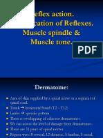 LECT. 1, Reflex action by dr sadia zafar
