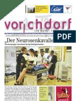 Vorchdorfer Tipp 2013-01