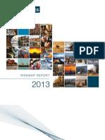 RiskMap_2013_REPORT
