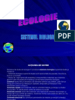Ecologie Sistemul Biologic