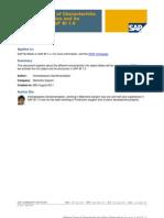 SAP BI (info objects)