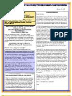 Newsletter 130117