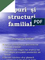 TIPURI Si Structuri Familiale (2)
