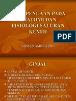 Efek Penuaan Pada Anatomi Dan Fisiologi Saluran Kemih