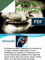 sensación y percepción