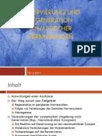 Denervierung und Regeneration synaptischer Verbindungen
