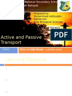 Chapter Active and Passive Transport