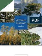 Arboles Nativos de Chile