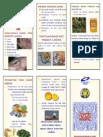 pendidikan kesehatan tentang anemia