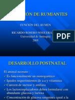 NUTRICIÓN DE RUMIANTES funcion del rumen