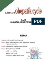 Siklus Enterohepatik