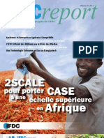 IFDC Report