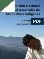 Guía programas CDI