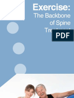 lumbar spine exercises