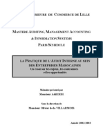 la pratique d'audit interne.pdf
