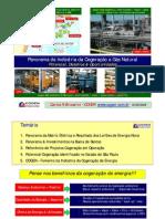 COGENGAS_Perspectivas_Desafios_Oportunidades_13mai09.pdf