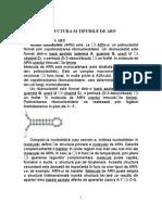 STRUCTURA SI TIPURILE DE ARN