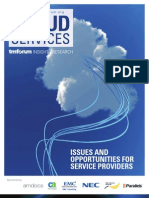 Cloud Services - Issues and Opportunities for Services Providers