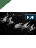 arte-e-tecnologia-interseccoes-paulo-bernardino