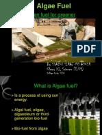 Algae-Photobioreactor-Guide