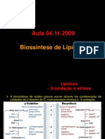 biossintese_lipideos