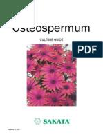Osteospermum+Culture+Guide