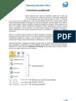 Formatarea conditionala_Excel 2010