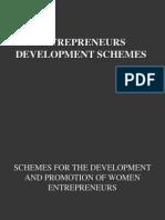entrepreneur scheme