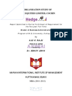 An Organisation study of Hedge equities