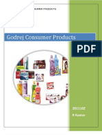 Godrej Consumer Products Marketing Strategy
