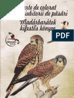 """Carte de colorat  """"Pasari din Romania"""""""
