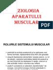 aparatul muscular